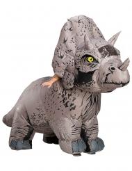 Triceratops-Kostüm für Erwachsene Jurassic World™ grau