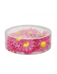Kunstblüten Zinnien Raum und Tischdekoration 20 Stück rosa-gelb