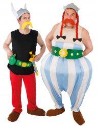 Asterix und Obelix-Partner-Verkleidung für Herren bunt