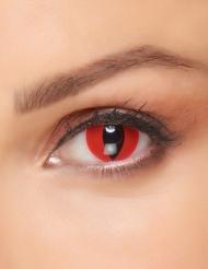 Höllische Katzenaugen-Kontaktlinsen für Erwachsene rot-schwarz 14,5 mm