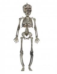 Skelett-Dekoration für Halloween grau 30 cm