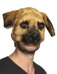 Realistische Hunde-Maske für Fasching Tiermaske braun