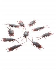Ekelhafte Kakerlaken Halloween-Krabbeltiere 10 Stück braun 7 cm