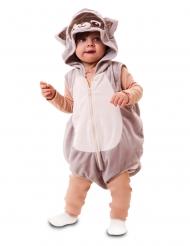 Süßes Waschbären-Kostüm für Kleinkinder Karnevals-Verkleidung grau-beige