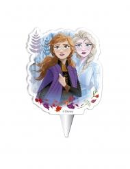 Disney Frozen2™-Geburtstagskerze für Kinder bunt 7,5 cm