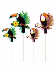 Sommerliche Cocktail-Spieße tropische-Picker 4 Stück bunt