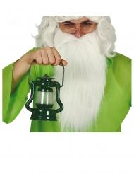 Märchen-Laterne mit Lichteffekt Zubehör für Fasching grün 17 cm