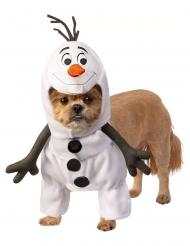 Olaf™- Hunde-Kostüm Tier-Verkleidung Frozen™ weiss-schwarz