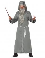 Magischer Schuldirektor Magier-Kostüm grau