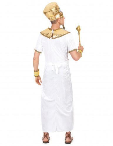 Pharaonen-Kostümfür Herren-2