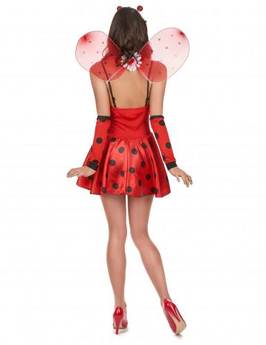Sexy Marienkäfer-Kostüm für Damen schwarz-rot-2