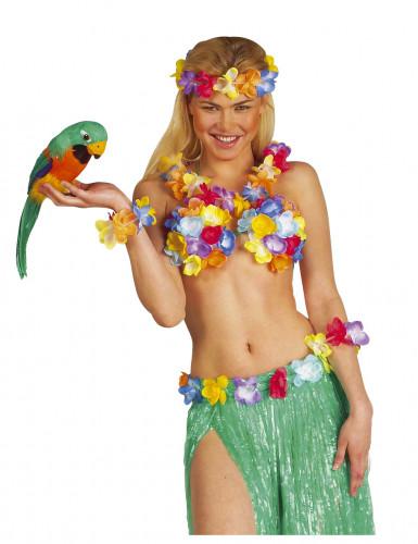 Hawaï-Papagei-1