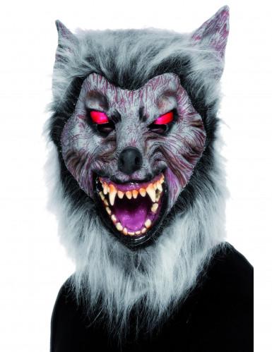 gruslige Werwolfsmaske für Erwachsene zu Halloween