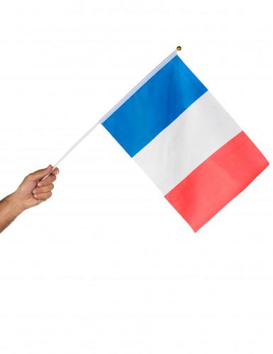 Fan-Flagge Frankreich-1
