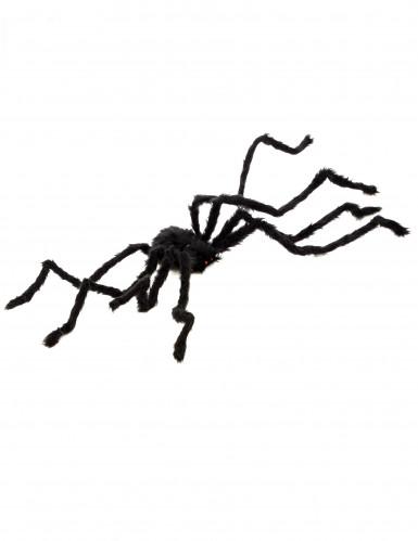 Haarige Spinne