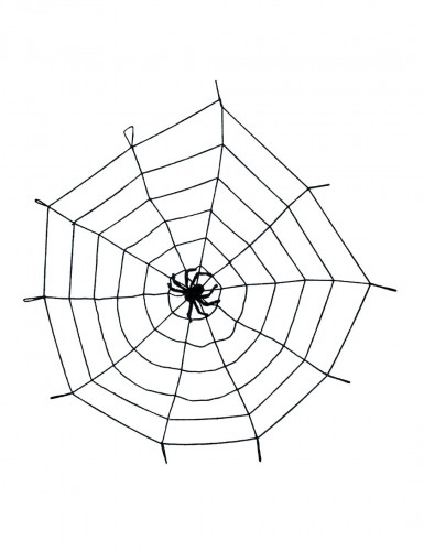 Elastisches Spinnennetz mit Spinne