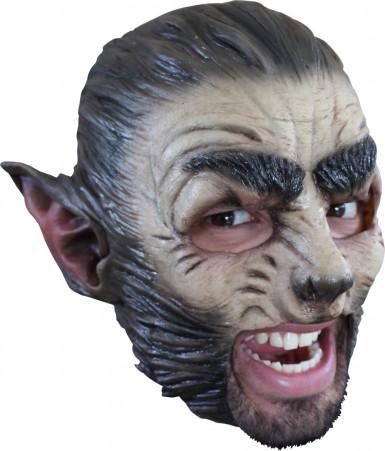 halloween wolf vollmaske f r erwachsene masken und. Black Bedroom Furniture Sets. Home Design Ideas