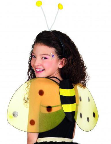 Bienen-Set für Erwachsene-1