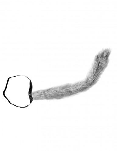 Wolfs-Schwanz für Erwachsene-1