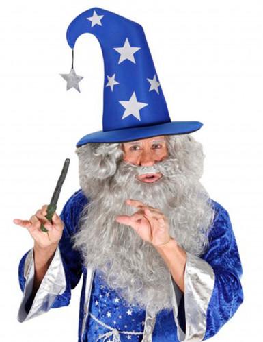Magier-Hut für Erwachsene