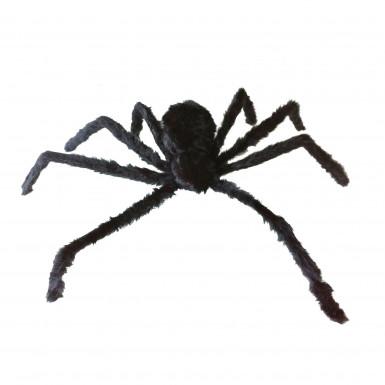 Riesige Spinne