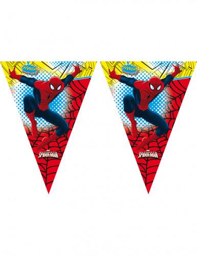 Wimpelgirlande Spiderman
