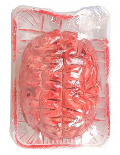Blutiges Gehirn Halloween