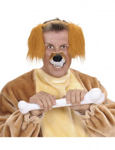 Hunde-Schnauze für Erwachsene-1
