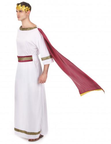 Griechischer Kaiser Kostüm für Herren-1