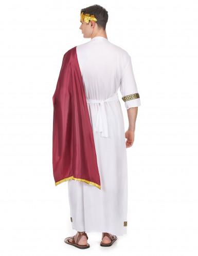 Griechischer Kaiser Kostüm für Herren-2
