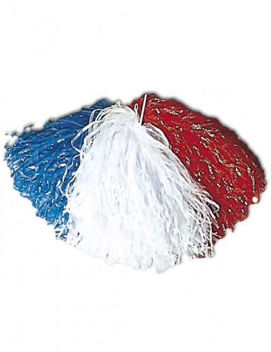 Frankreich-Fan-Pompon