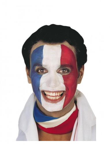Frankreich-Fan-Schminke-1