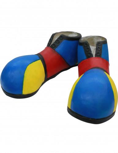 Blaue Clown Schuhe