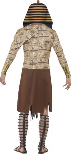 Halloween Zombie Pharao Kostüm für Erwachsene-2