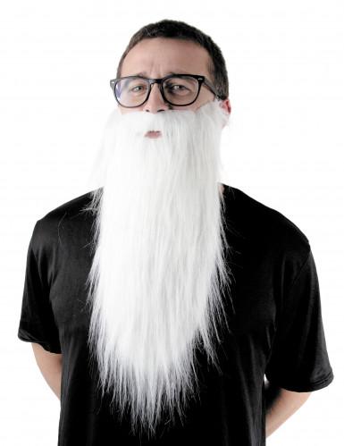 Langer weißer Bart