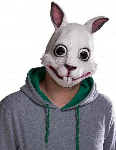 Hasen Maske