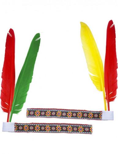 Indianer Stirnband mit Federn für Erwachsene-1