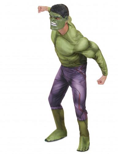 Verkleidung Hulk - Film 2-1