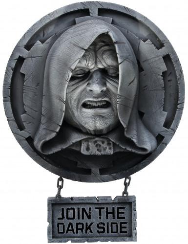 Wand-Dekoration Palpatine aus Star Wars™