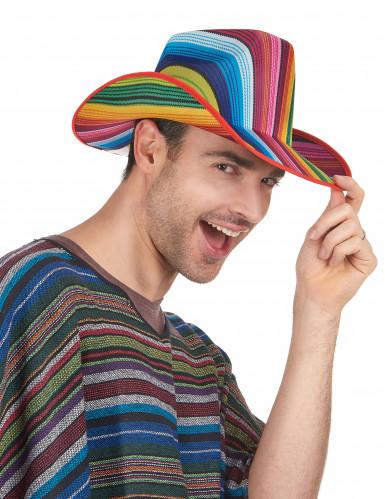 Bunt gestreifter Cowboy-Hut Für Erwachsene-1