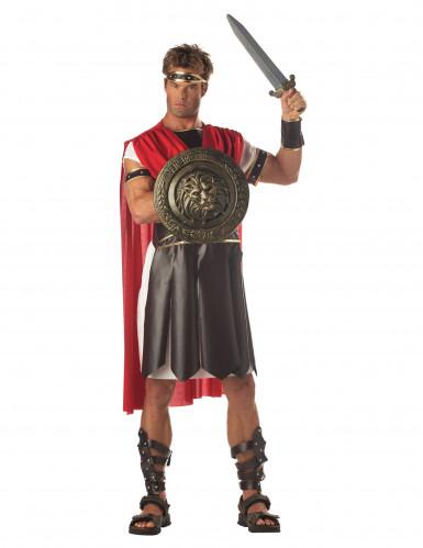 Schutzschild und Schwert für Gladiator-1