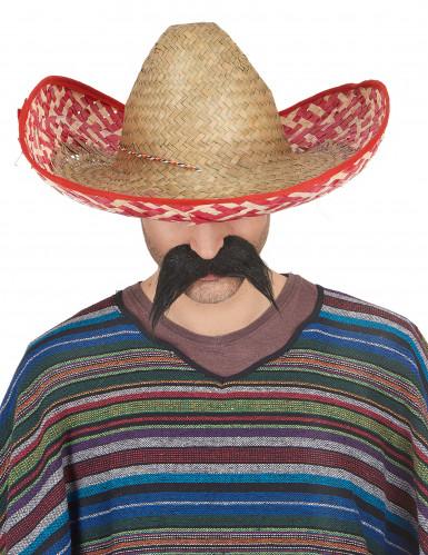 Mexikanischer Sombrero für Erwachsene Strohhut beige-rot-1