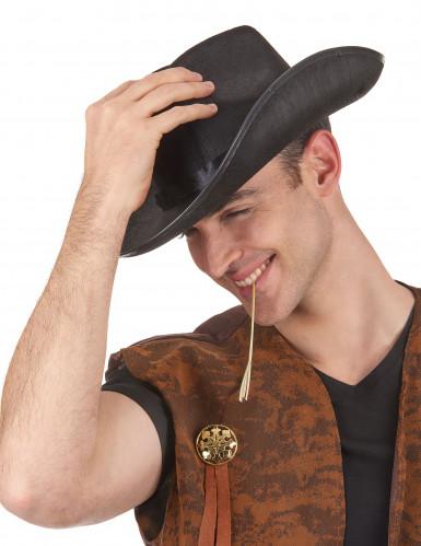 Prärie Cowboy-Hut für Erwachsene schwarz-1