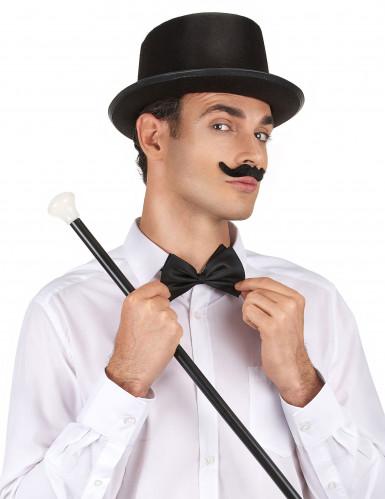 Schwarzer Zylinder-Hut für Erwachsene-1
