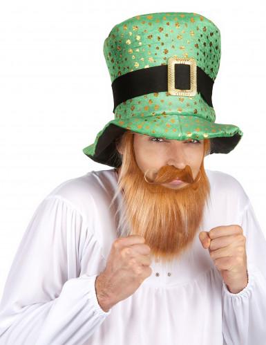Zylinderhut mit goldenen Klee für Saint Patrick-1