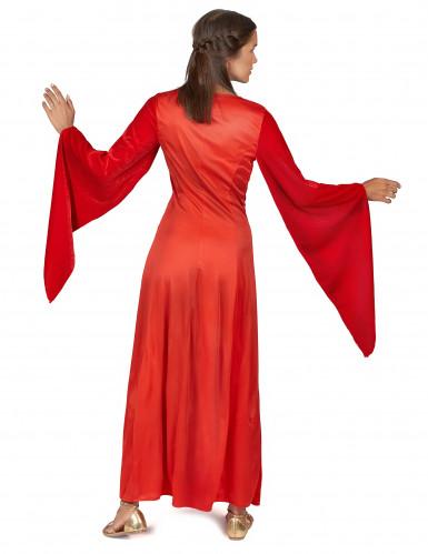 Mittelalterliches Kostüm Damen-2