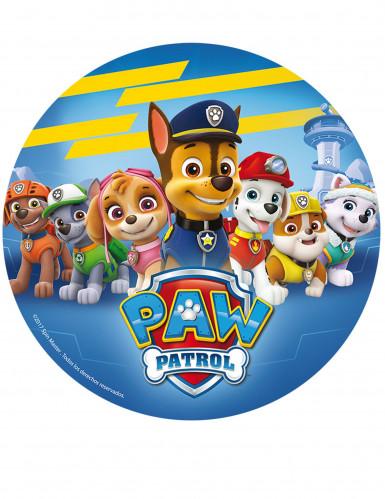 Paw Patrol in Oblatenform 20 Zentimeter
