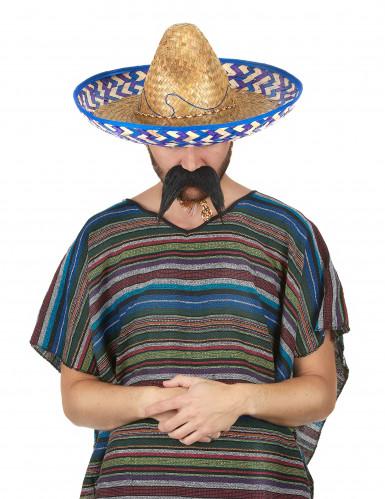 Mexikanischer Strohhut-1