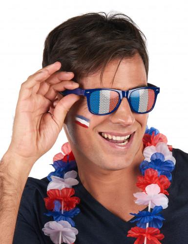 Französische Fan-Brille-1