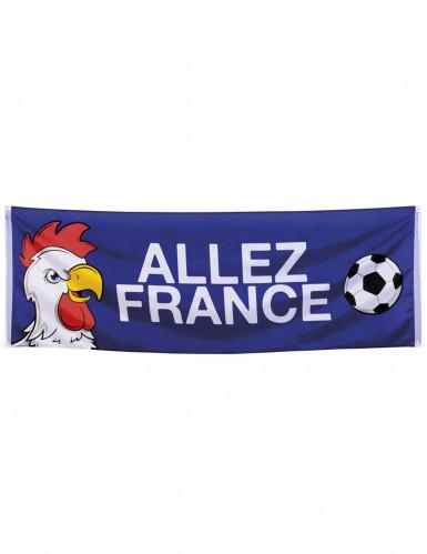 BannerAllez France
